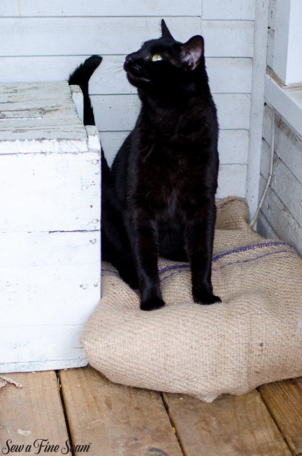 burlap-coffee-sacks-repurposed-cat-bed-and-rug-10