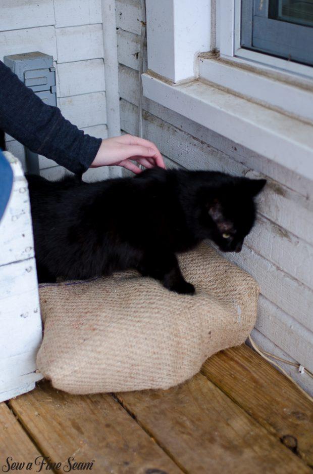 burlap-coffee-sacks-repurposed-cat-bed-and-rug-7