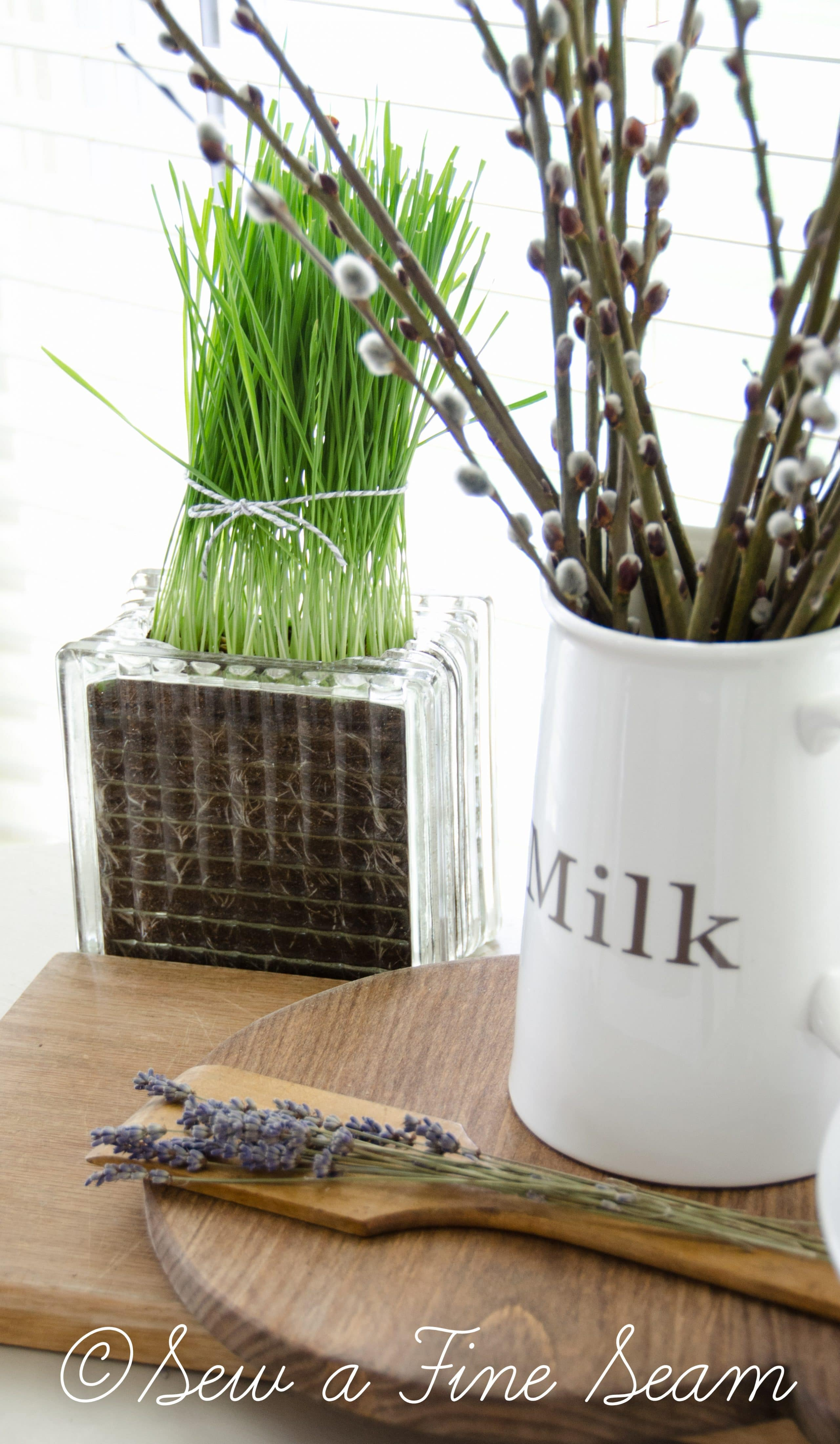 Decorative Items For Living Room: Planting Wheat Grass For Decor