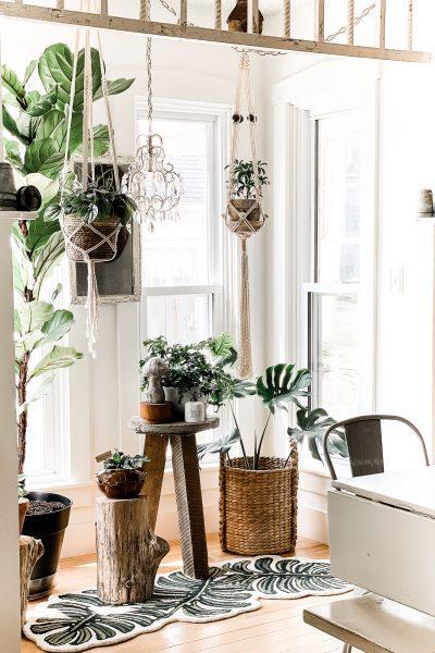 dining-room-windows